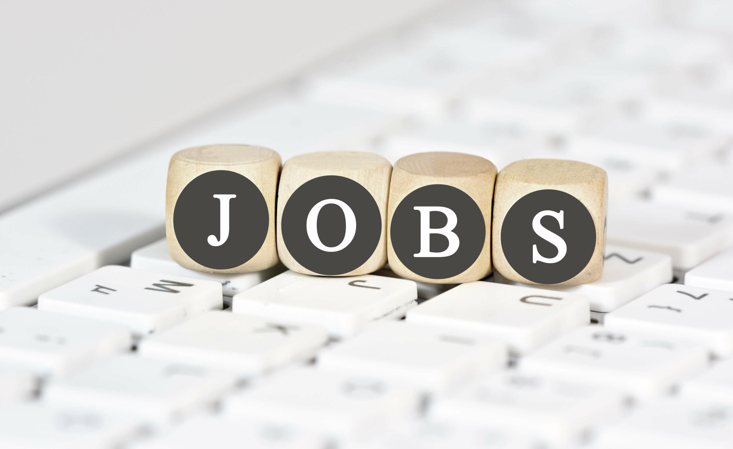 WPC Terrassendielen Depot Jobs und Karriere