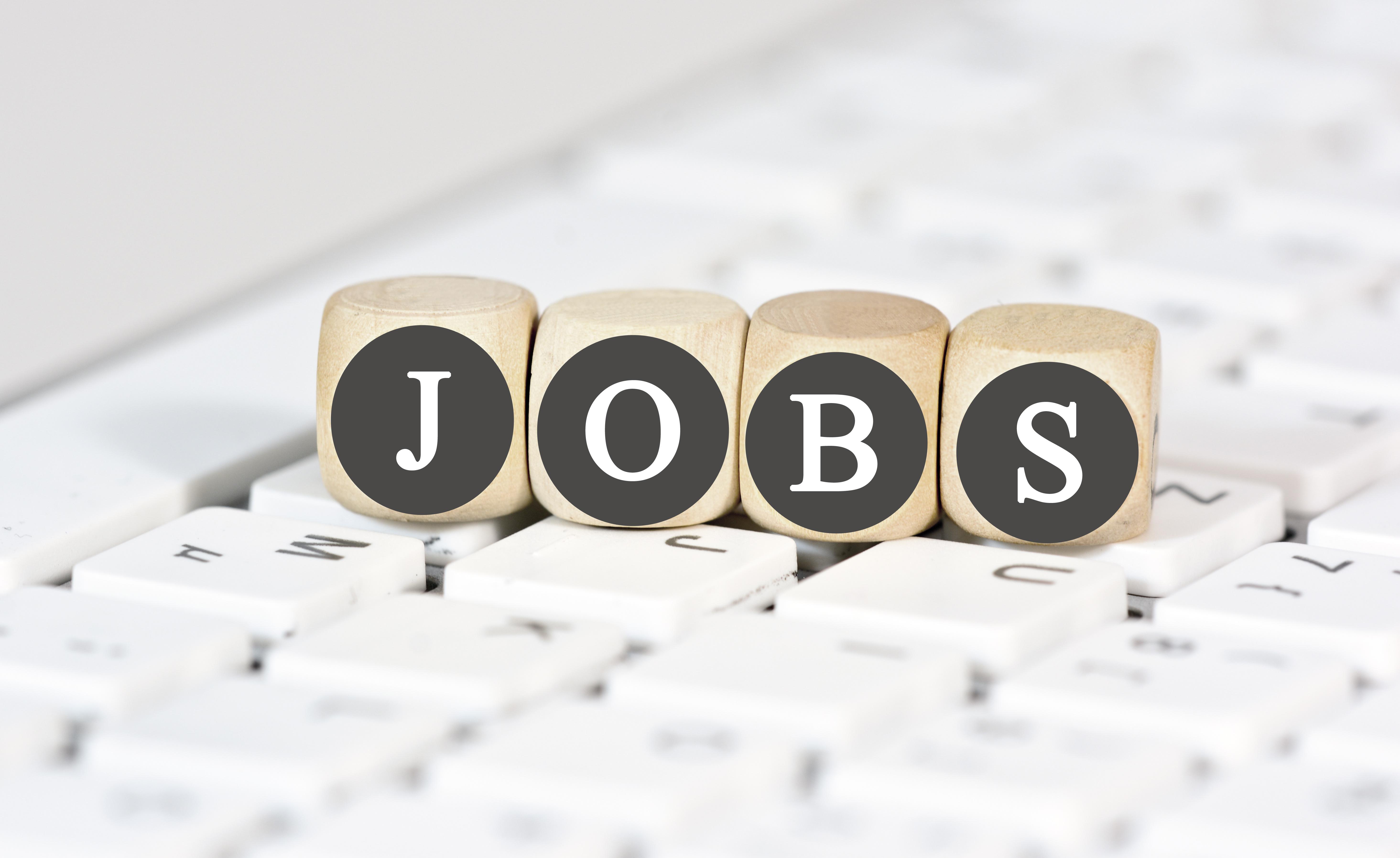 Jobs und Karriere WPC Terrassendielen Depot